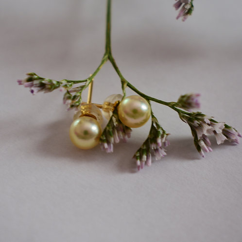 4mm baby akoya stud earrings