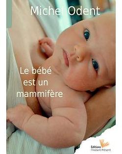 Le-bebe-est-un-mammifere_Camille_Houssai