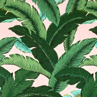 Tommy Swaying Palms Pink Capri