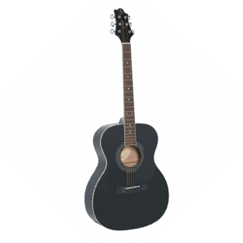 GOM100S acoustic