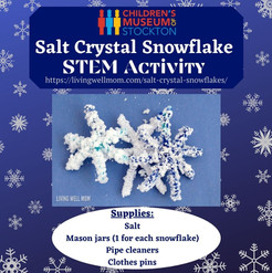 Salt Crystal Snowflake_ STEM Activity (C