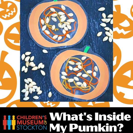 What's inside My Pumkin_ (Complete).jpg