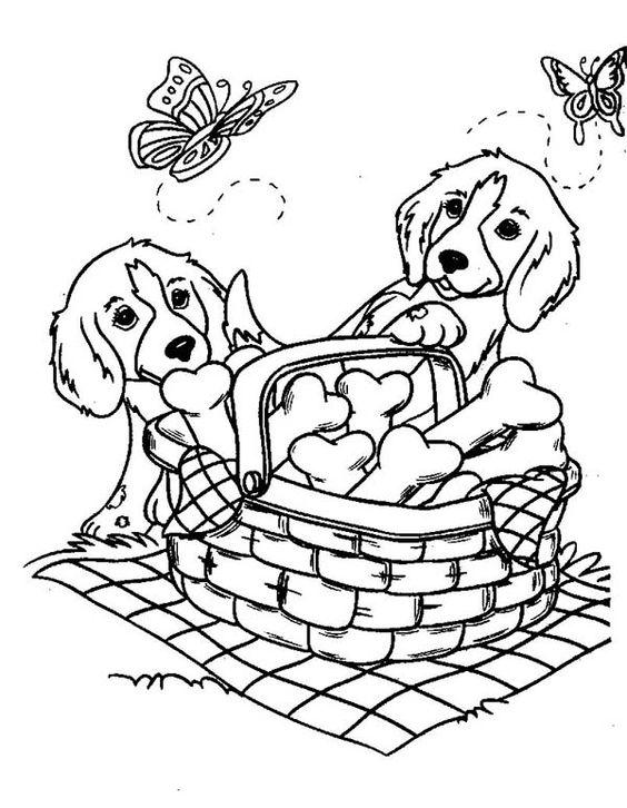 Doggie Picnic