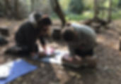 Surrey, First Aid for Forest Schools 201