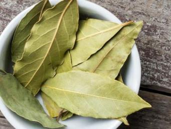 FOLHAS DE LOURO: fonte das vitaminas A e C, atua como diurético, combatendo inchaços e a retenção de