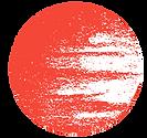 Logo TNHC copy.png