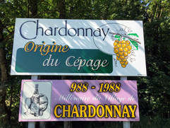 The Village of Chardonnay was Born in 988 and is the Birthplace of the Chardonnay Grape Variety