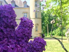 Spring at Château du Martret