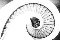 Spiral Stairs_edited.jpg