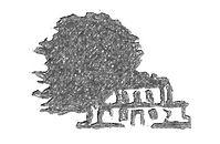 Logo El Pino.jpg