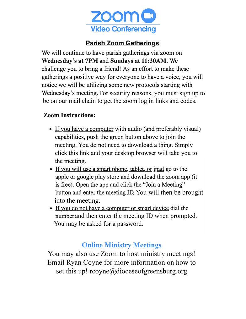 zoom video conferencing.jpg