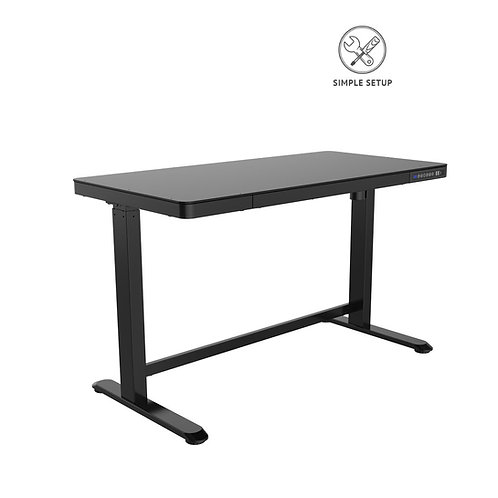 Height Adjustable Desk 120cm
