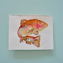 saumon 3 - aquarelle