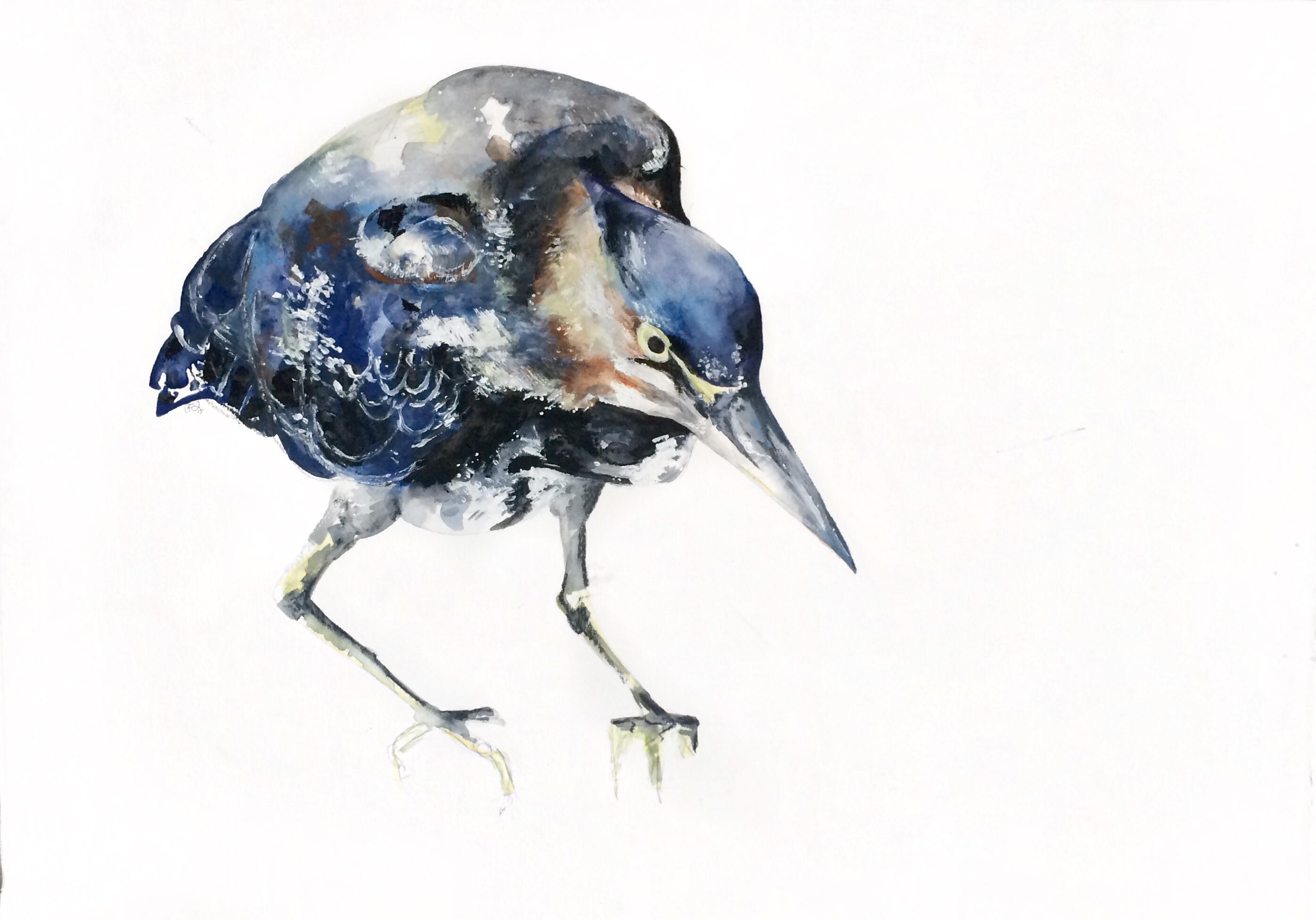 Le Héron Bleu I
