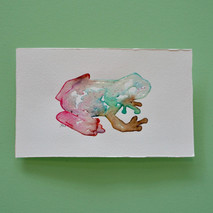 grenouille 1 - aquarelle