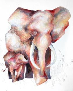 Maman Éléphant