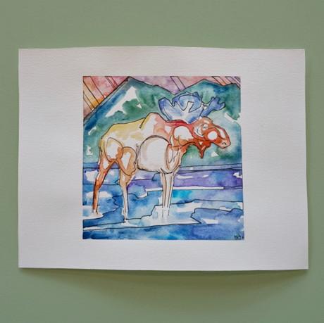 vermont - aquarelle