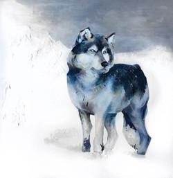 Le Loup I