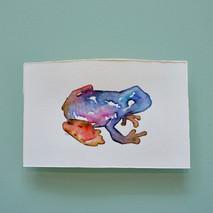 grenouille 2 - aquarelle