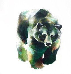 L'Ours Vert I