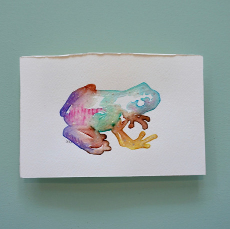 grenouille 3 - aquarelle