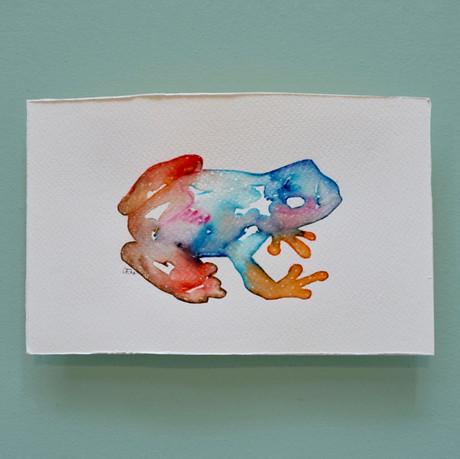 grenouille 4 - aquarelle
