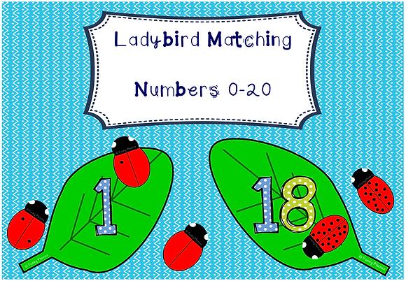 Ladybird Matching
