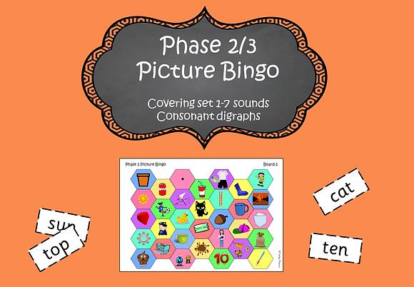 Phase 2/3 - Picture Bingo