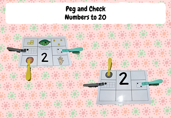 Numbers to 20 - Peg and Check