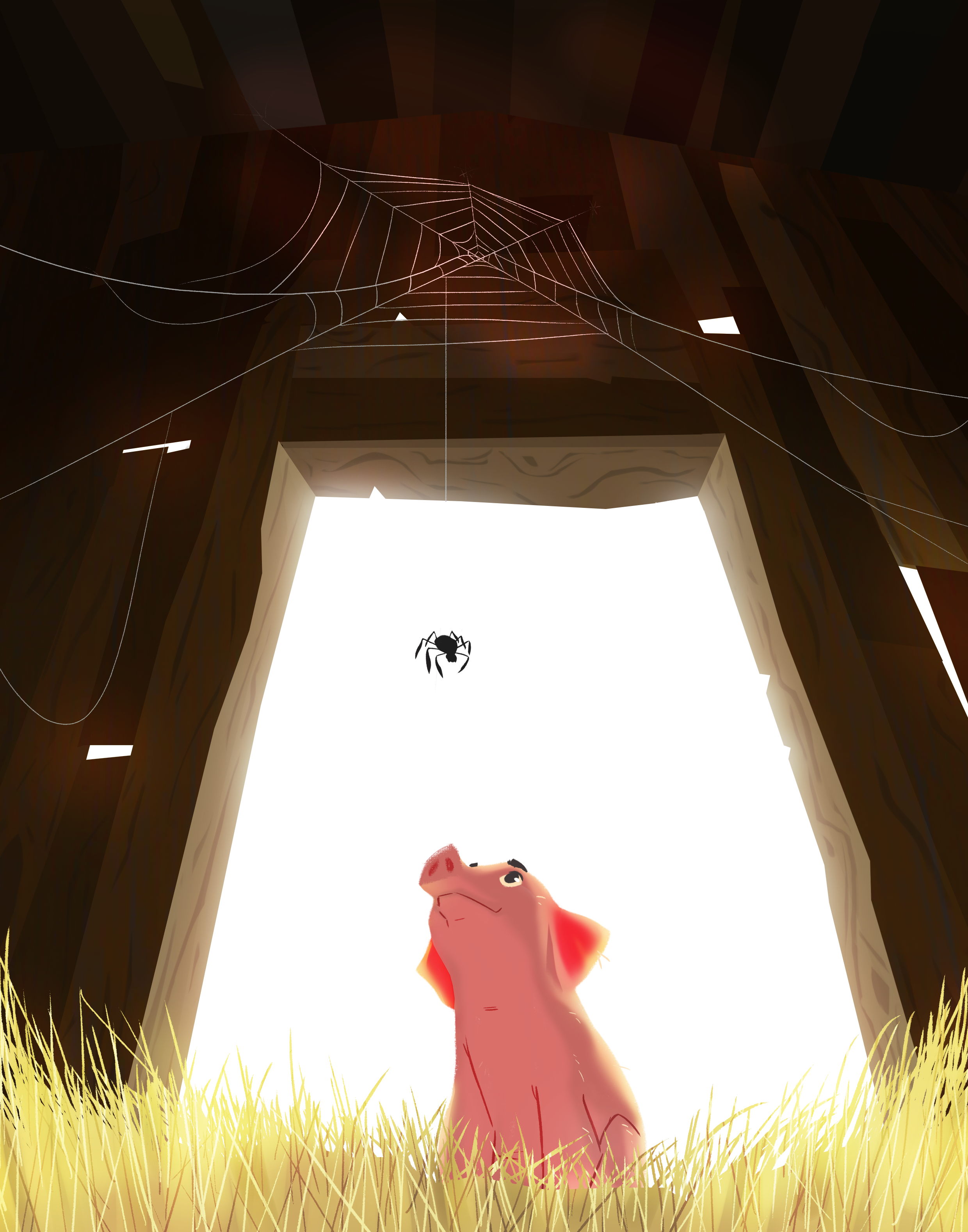 The Charlotte's web