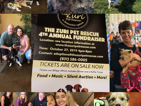 Ready to party for a good cause!?