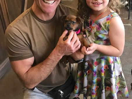 Little Eve Got Adopted!