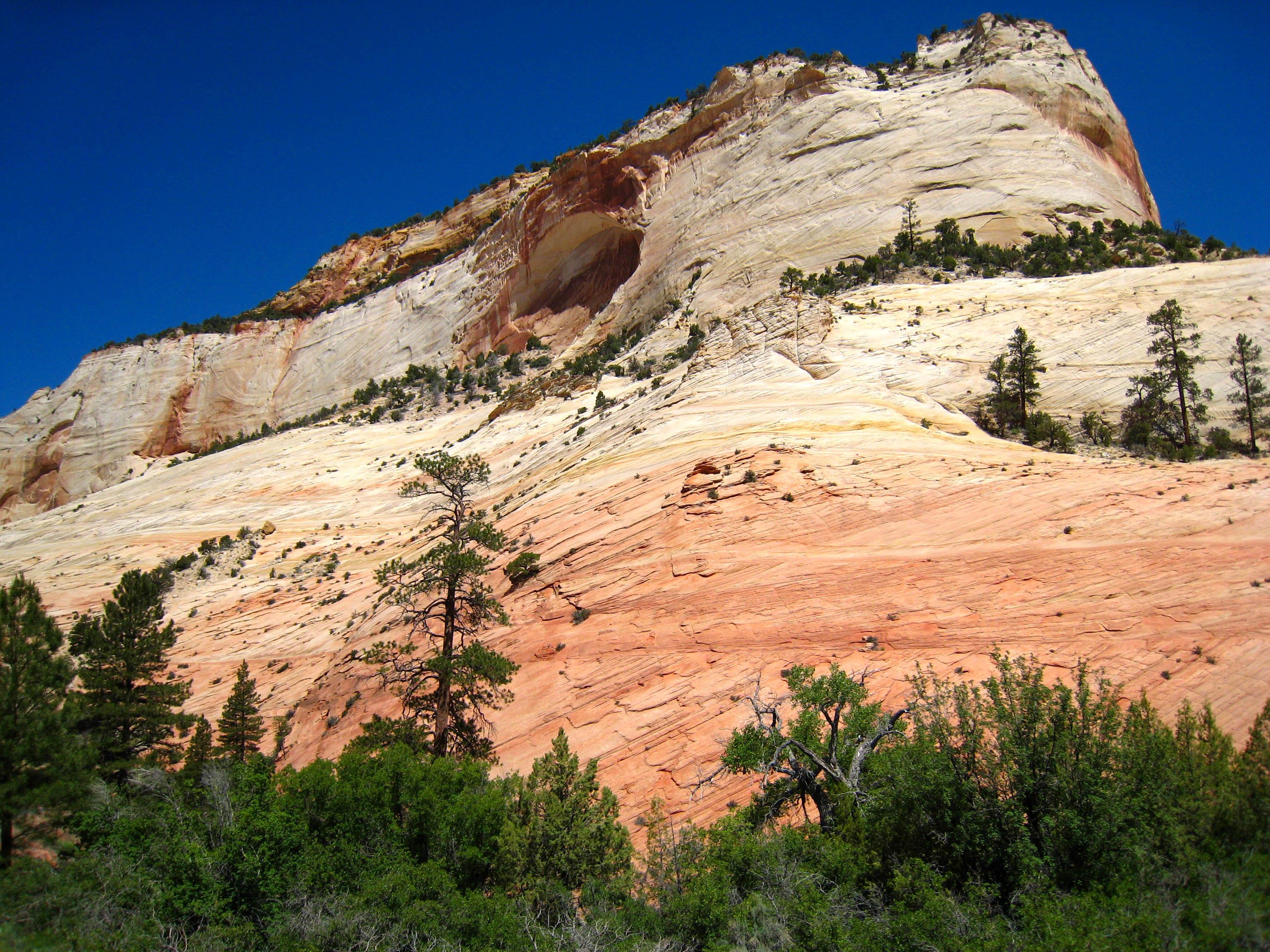 Sandstone Mesa, Zion