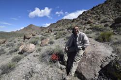Nevada Desert | Area 51