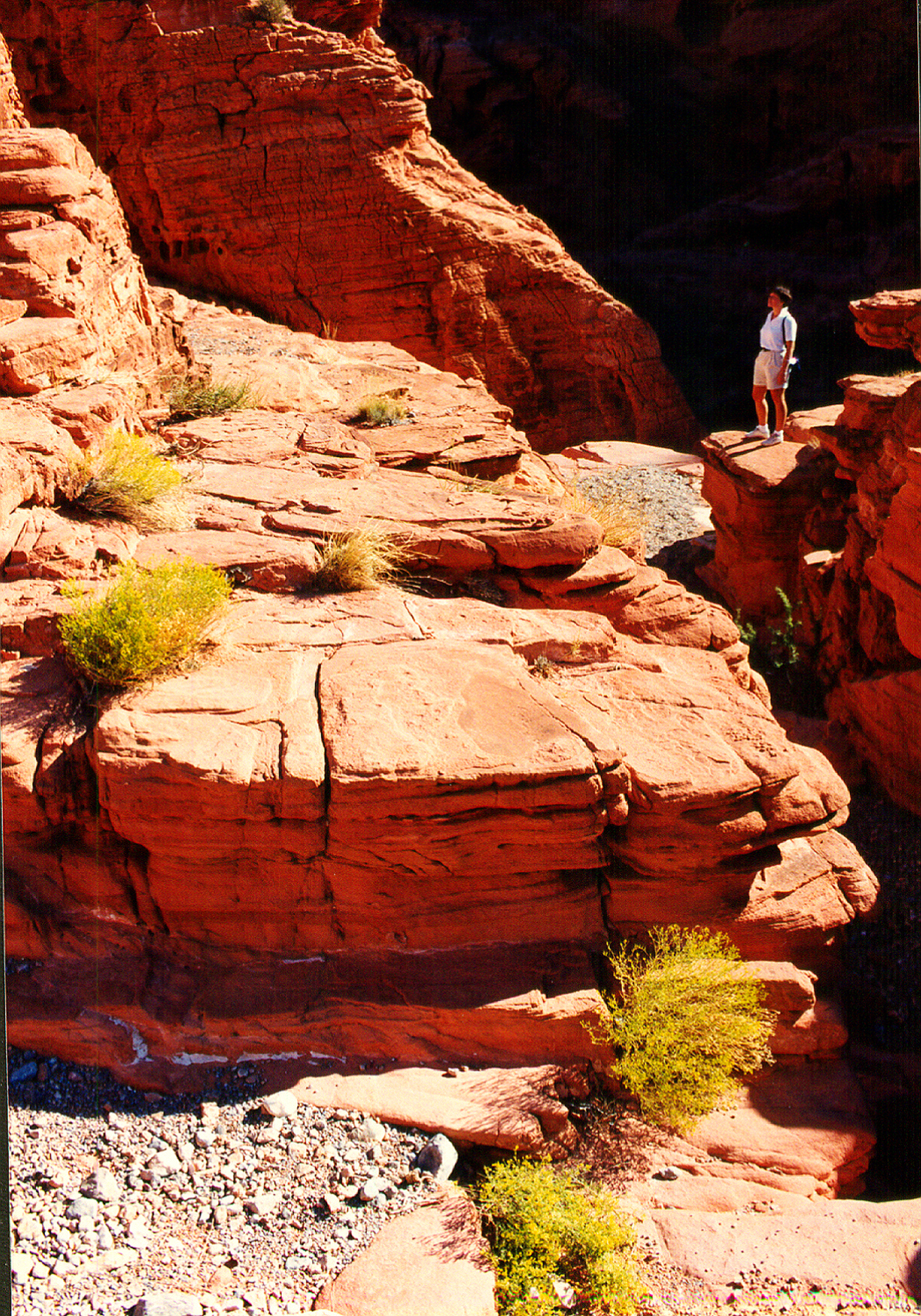 Lady in the Valley of Fire