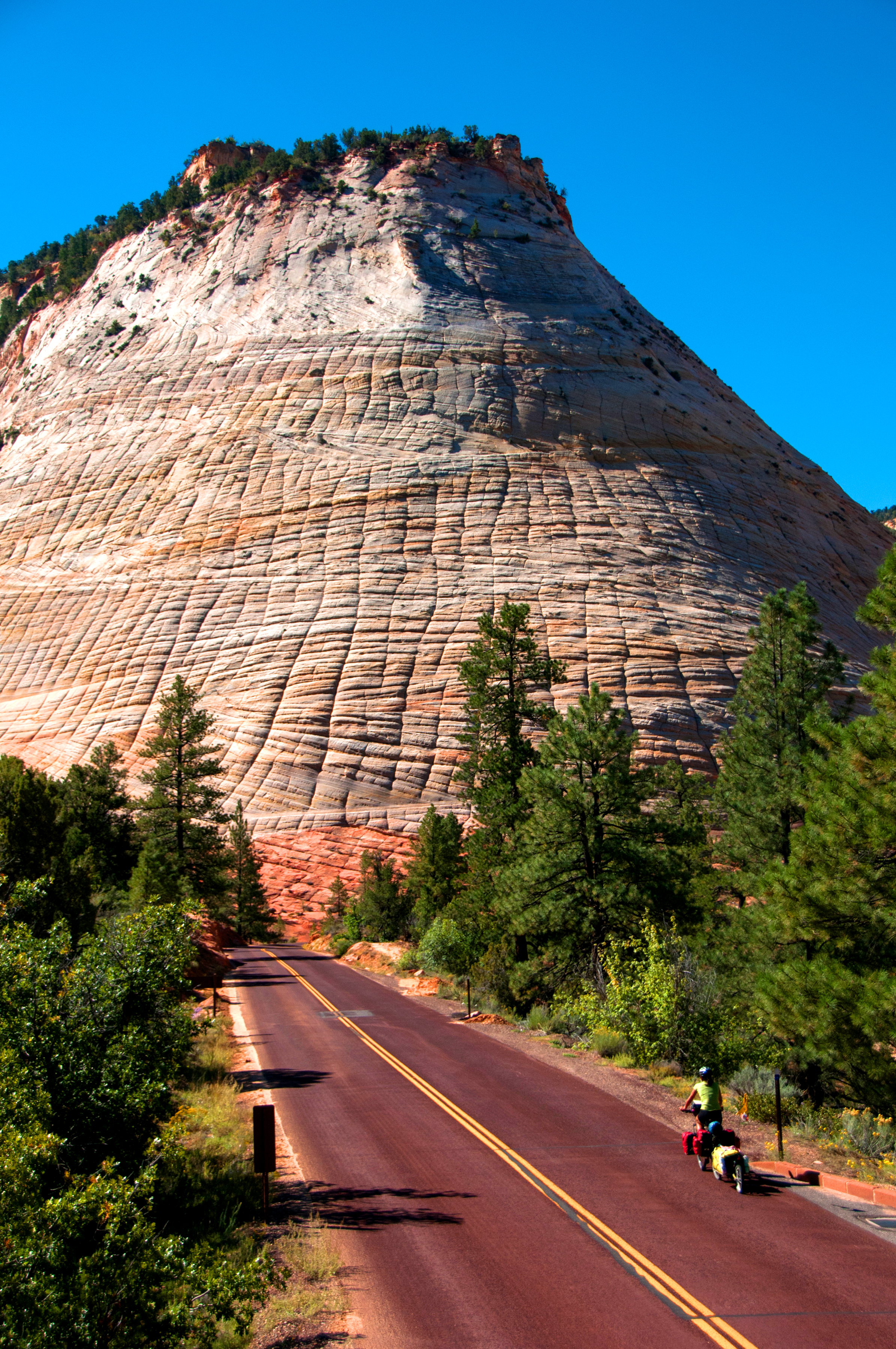Checkerboard Mesa, Zion
