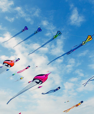 Kites Flying in Cloudy Sky