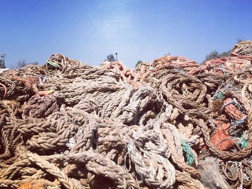 Circularstory #10 : Ils récupèrent des cordages issus de la pêche pour en faire des palettes !