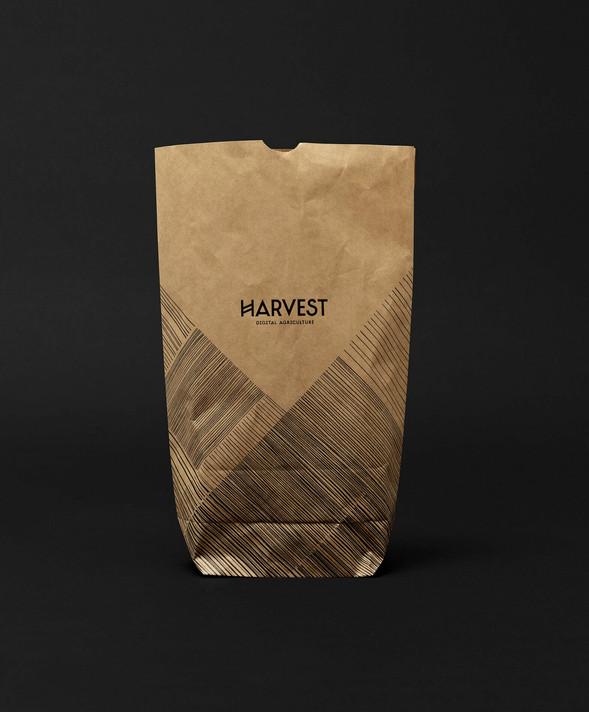 antje_hedde_Harvest_010.jpg