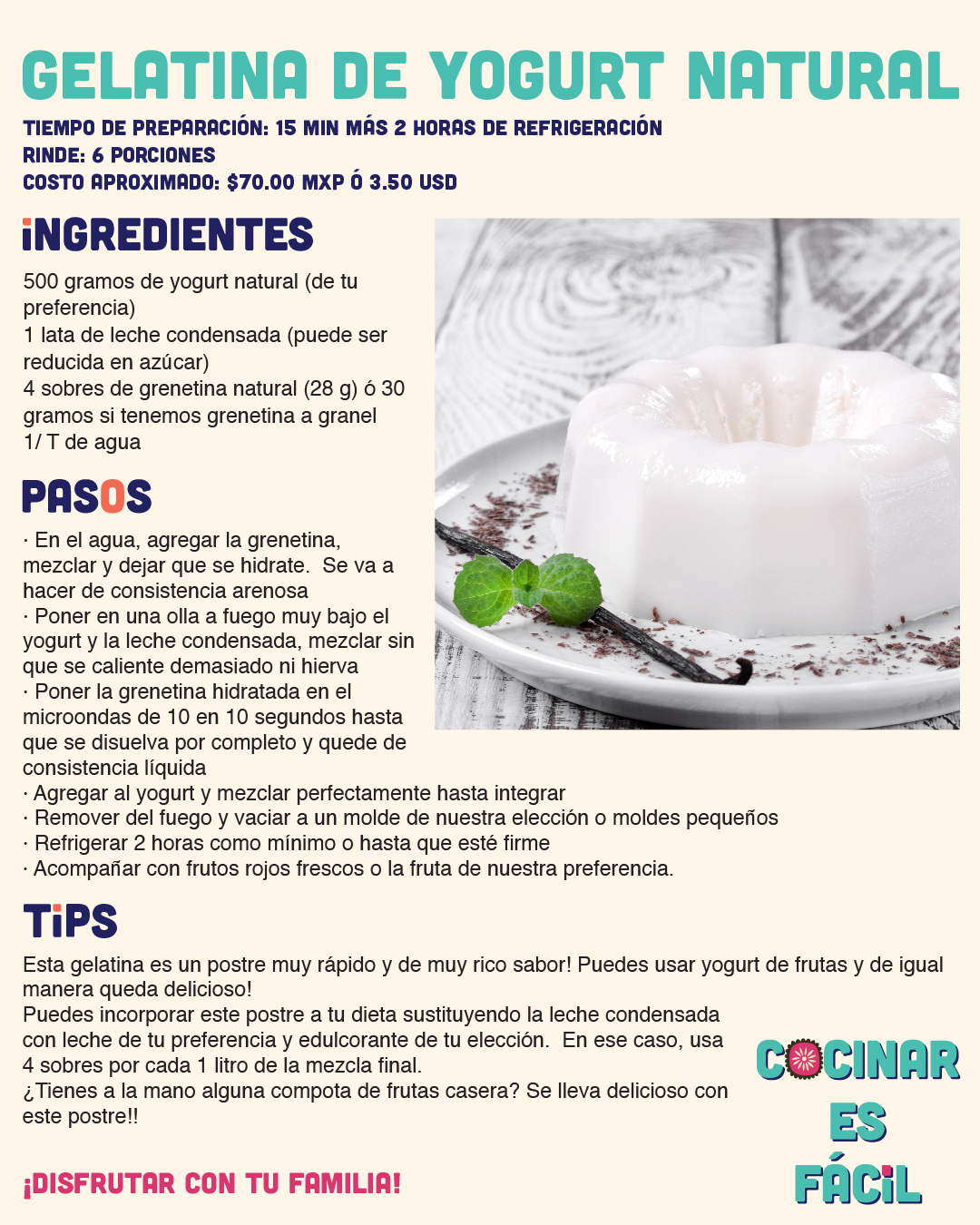 Gelatina de Yogurt Natural