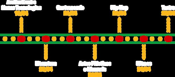 ETAPAS - programação.png