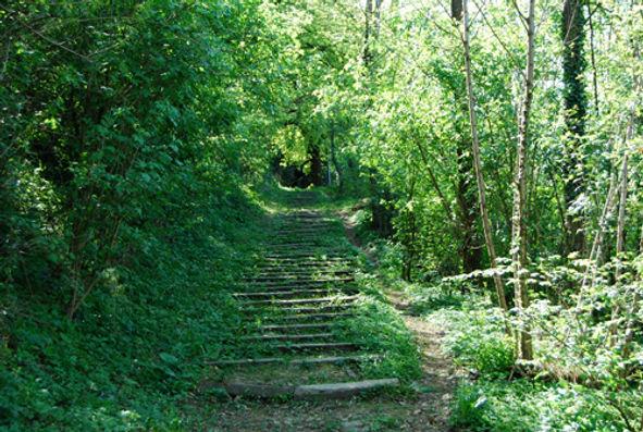 scalinata.jpg