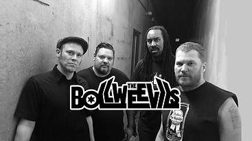 Bollweevils Band.jpg