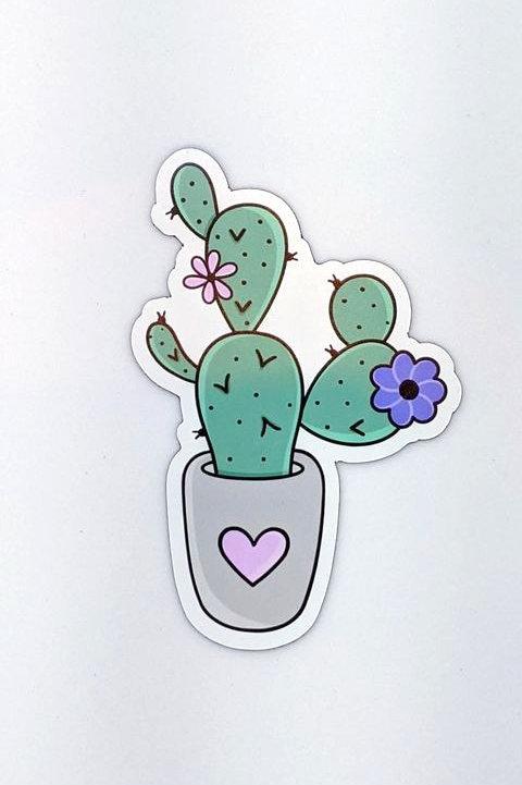 Aimant - Cactus