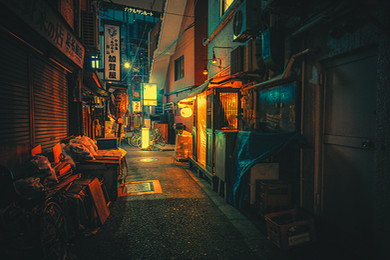 Our Surroundings IV - Tokyo Night Photography