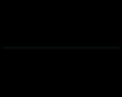 Prestige Slow-Mo Logo mintgreen line.png