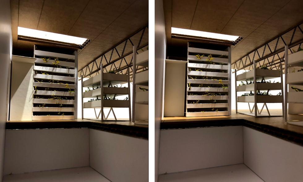 Skylight + Bathroom Door Design