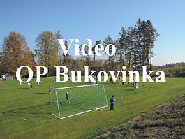 video op.jpg