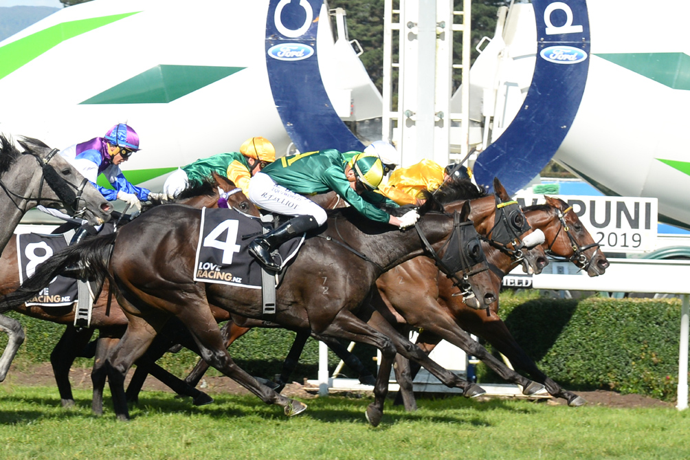 THE BANDITO - MANAWATU 30-3-2019 RACE IM