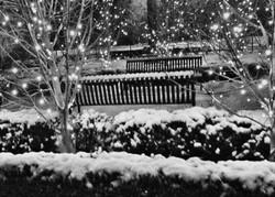 winter memorial garden